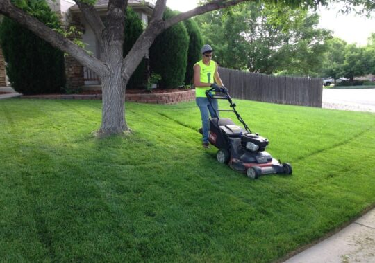 Lawn Service-El Paso TX Landscape Designs & Outdoor Living Areas-We offer Landscape Design, Outdoor Patios & Pergolas, Outdoor Living Spaces, Stonescapes, Residential & Commercial Landscaping, Irrigation Installation & Repairs, Drainage Systems, Landscape Lighting, Outdoor Living Spaces, Tree Service, Lawn Service, and more.