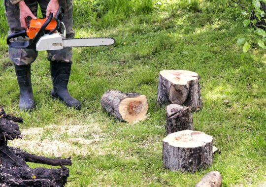 Tree Service-El Paso TX Landscape Designs & Outdoor Living Areas-We offer Landscape Design, Outdoor Patios & Pergolas, Outdoor Living Spaces, Stonescapes, Residential & Commercial Landscaping, Irrigation Installation & Repairs, Drainage Systems, Landscape Lighting, Outdoor Living Spaces, Tree Service, Lawn Service, and more.